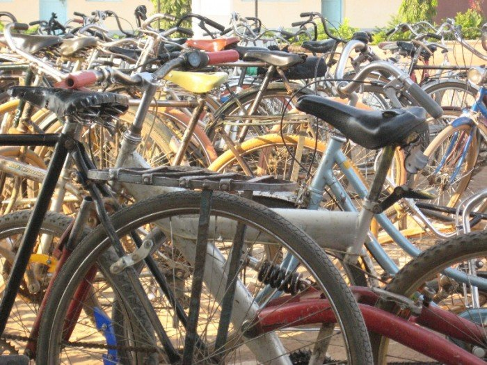 Bicycles, African Barrick Gold (Buzwagi)
