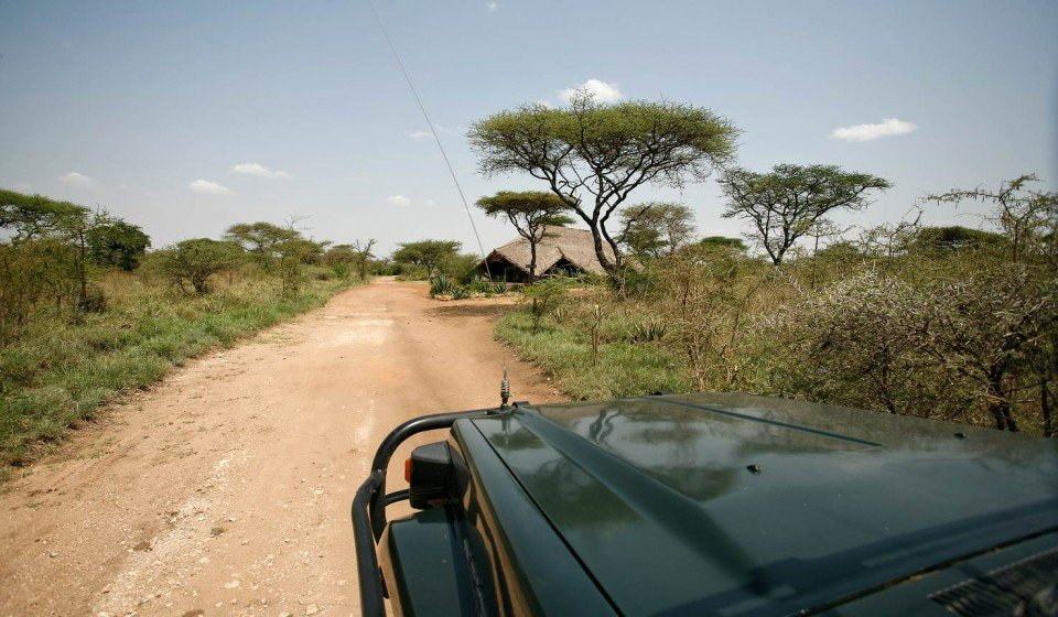 Car in the Serengeti