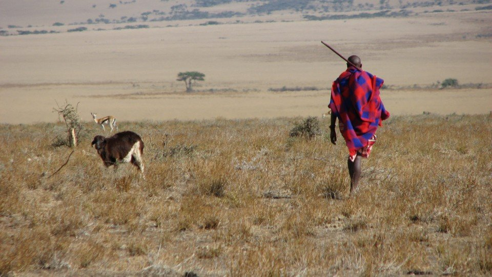 Maasai man, Eastern Serengeti, October 2006
