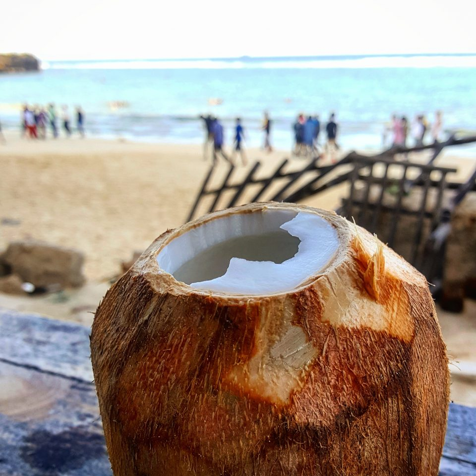 Coconut with Coco Beach in the Background