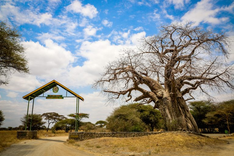 Entrance Tarangire National Park