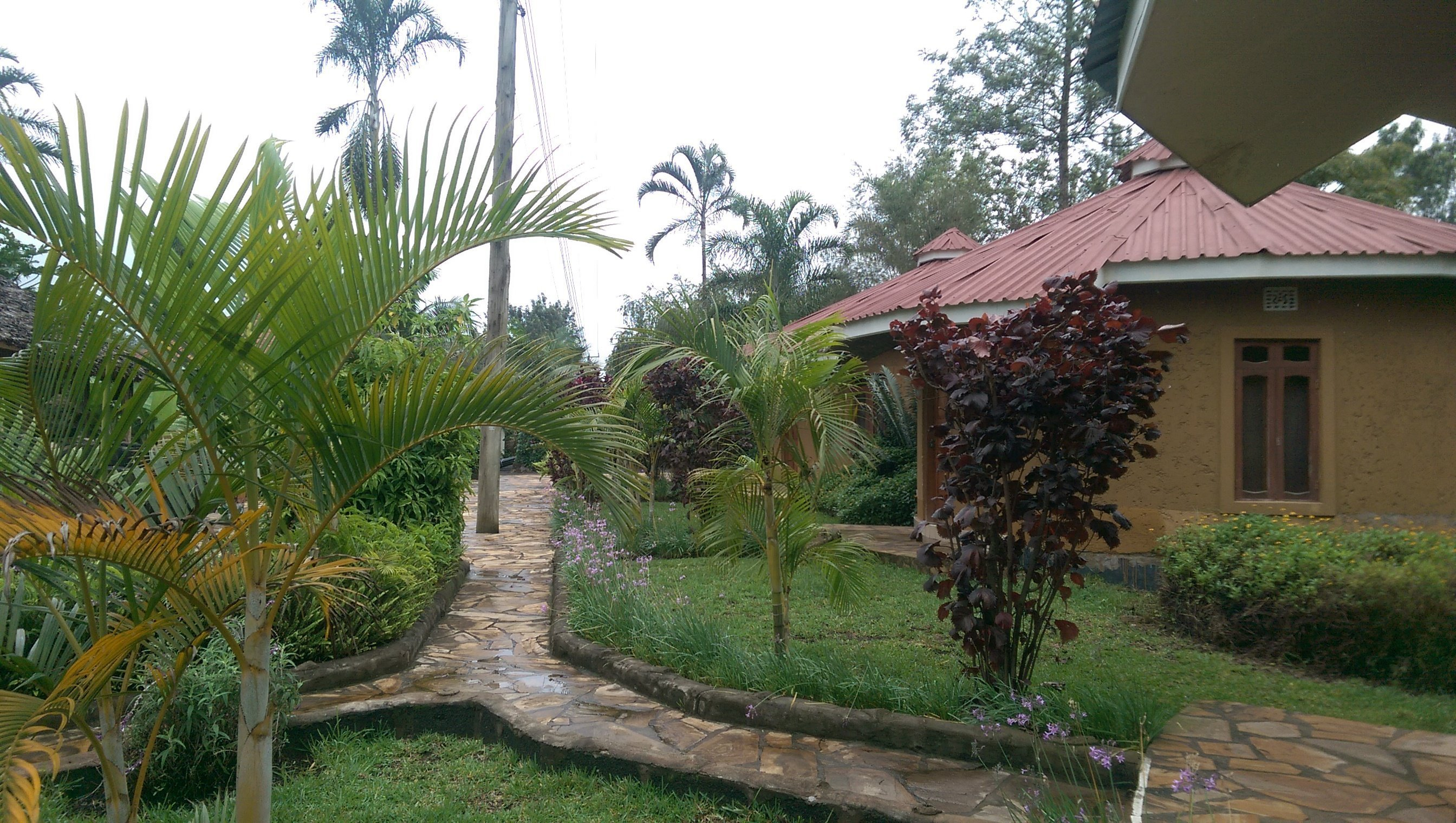 Grounds of Kilimanjaro Eco Lodge